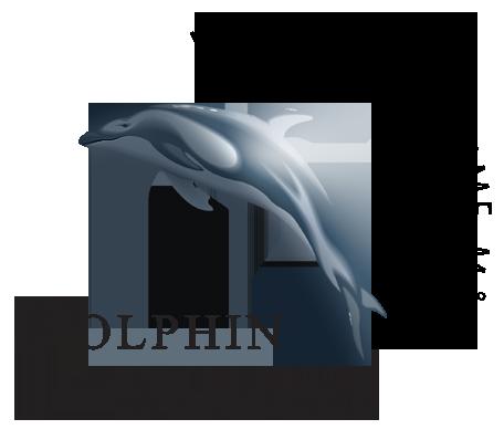 Dolphin Consult Optimal udnyttelse af dine IT programmer kurser online workshop