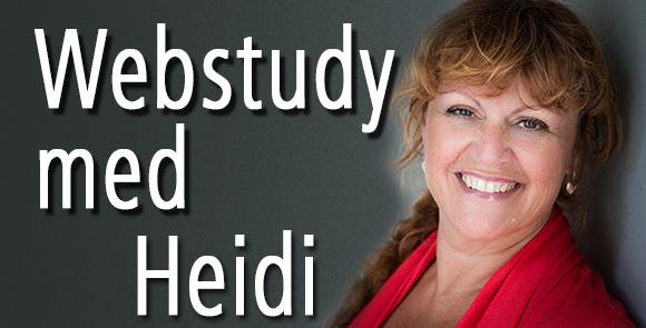 Webstudy med Heidi - Nyhedsbrev med Heidi Bille, Dolphin Consult og Webstudy