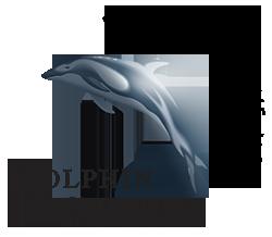 Dolphin Consult Optimal udnyttelse af dine IT programmer kurser online workshop webshop IT på den nemme måde