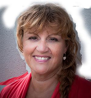 Konsulentpriser klippekort konsulentopgaver support Heidi Bille og Dolphin Consult